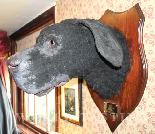 The Hound of the Baskervilles @ The Sherlock Holmes Museum, London