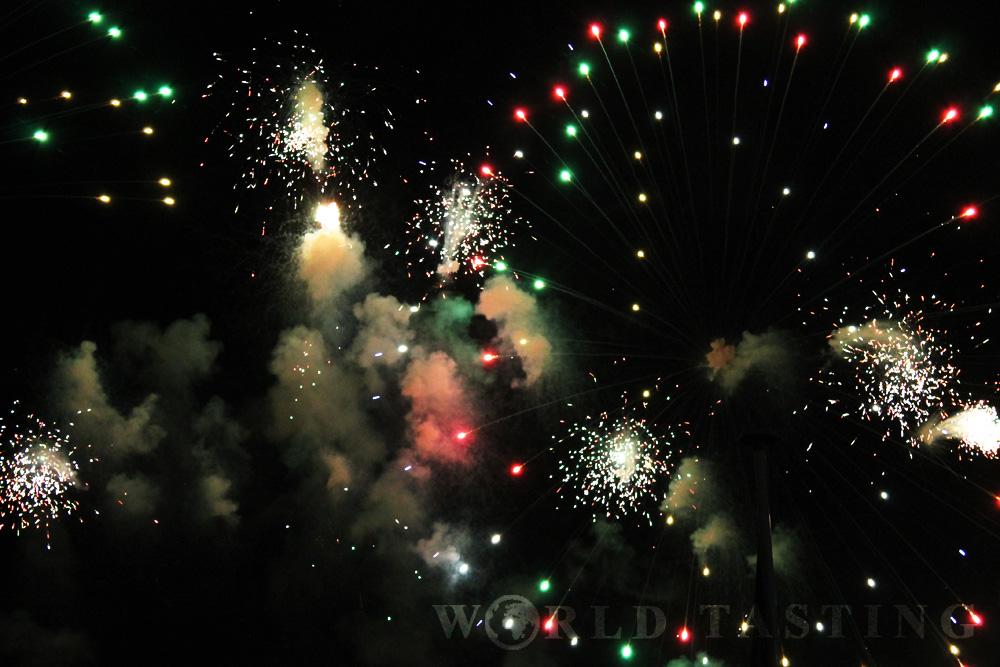 nice-france-fireworks-wt14