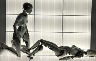 Björk Exhibition at MOMA Museum of Modern Art New York City